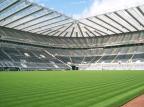 Premier League: podział punktów na St. James' Park