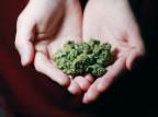 Warszawa: 72-latek handlował marihuaną. Chciał dorobić do emerytury