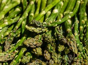 Ponad 400 Polaków jest na kwarantannie na niemieckiej farmie szparagów