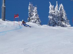 Narciarstwo alpejskie - PŚ: Alexis Pinturault zdeklasował rywali w Adelboden!