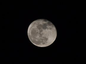 Japoński miliarder oferuje lot wokół Księżyca dla ośmiu osób