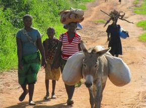 Japonia: darowizna w wysokości 3 milionów euro dla agencji ONZ w Mozambiku