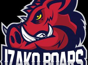 CS:GO: Avis opuszcza szeregi Izako Boars