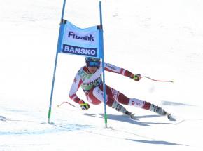 Narciarstwo alpejskie - MŚJ: faworyci potwierdzają dobrą formę w slalomie gigancie