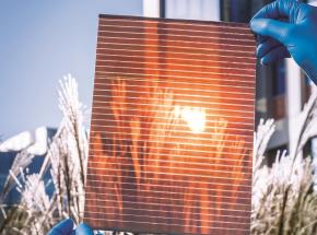 Drukowane, ultracienkie i elastyczne ogniwa słoneczne produkowane we Wrocławiu