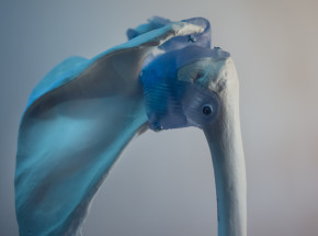 FlexiOss – sztuczna kość
