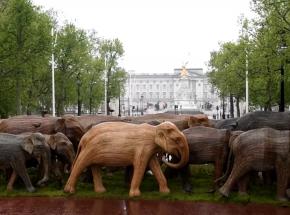 Londyn: wystawa stu rzeźb słoni przed Pałacem Buckingham