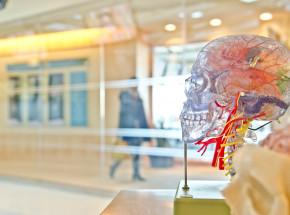 Medytacja: zbadane zmiany neurologiczne mózgu