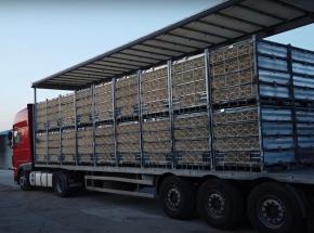 Niemcy: ciężarówka transportująca 6 tys. sztuk drobiu przewróciła się