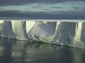 Odkryto nowe życie pod lodowcem szelfowym na Antarktydzie