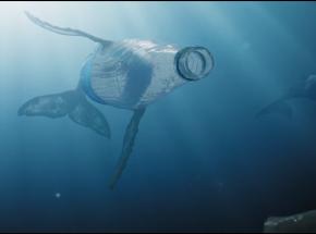 Krótkometrażowe dystopijne filmy o zanieczyszczonych oceanach