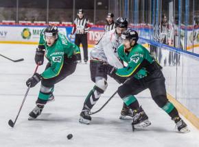Hokej: PHL - Jastrzębie pokonuje Podhale