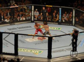 MMA: Styczniowe gale UFC po raz pierwszy z fanami na widowni