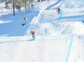 Narciarstwo dowolne - MŚ: Naeslund i Fiva mistrzami świata w skicrossie!