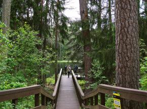 Nowe opłaty za wstęp do parków narodowych