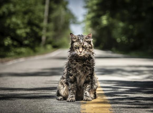 """Kontynuacja """"Smętarza dla zwierzaków"""" w drodze na ekran"""
