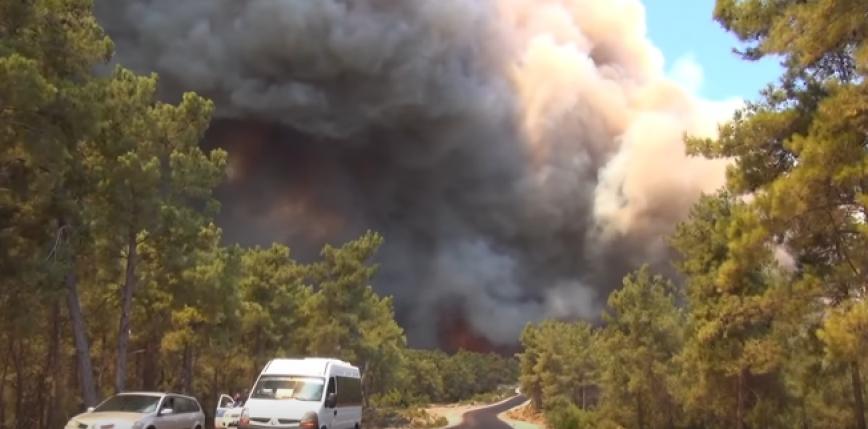 Turcja: pożar lasu w Manavgacie