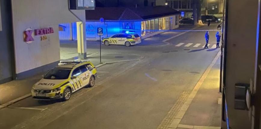 Norwegia: mężczyzna strzelający z łuku zabił 5 osób [AKTUALIZACJA]