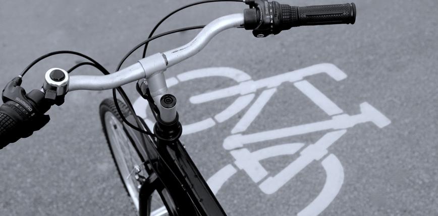 Pierwsza w Polsce podwieszana ścieżka rowerowa. Ochroni korzenie drzew