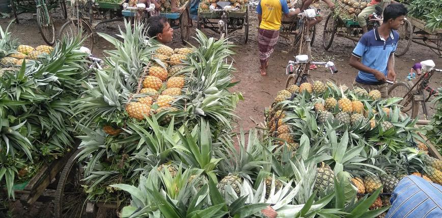 """Tajwan: apel do obywateli o jedzenie """"ananasów wolności"""" po zakazaniu importu przez Chiny"""