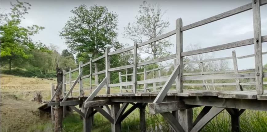 Pod młotek trafi most z książek o losach Kubusia Puchatka