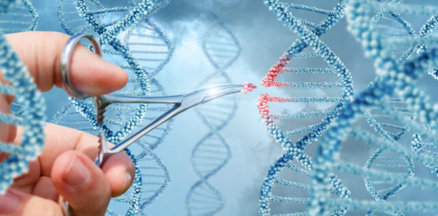 Inżynieria genetyczna zarodków – etyka czy nauka?