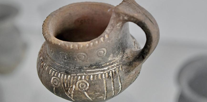 Odkryto dowody na spożywanie piwa 9000 lat temu