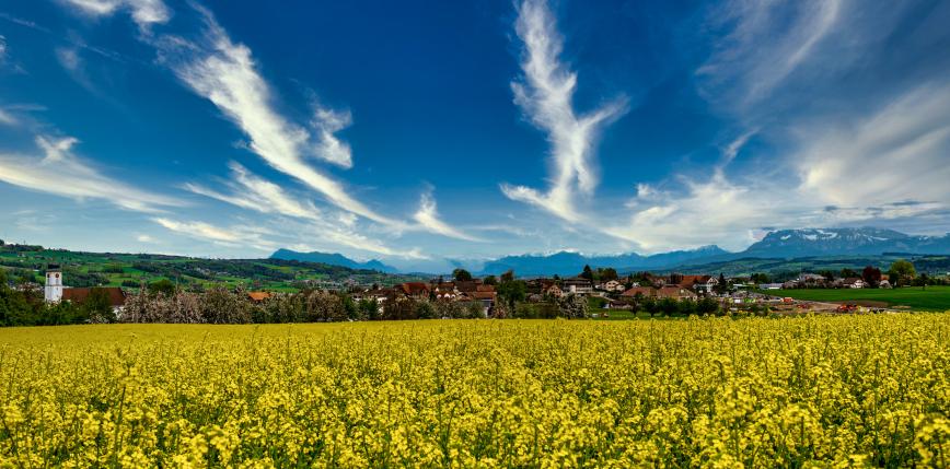 Szwajcaria: głosowanie w sprawie zakazu stosowania syntetycznych pestycydów