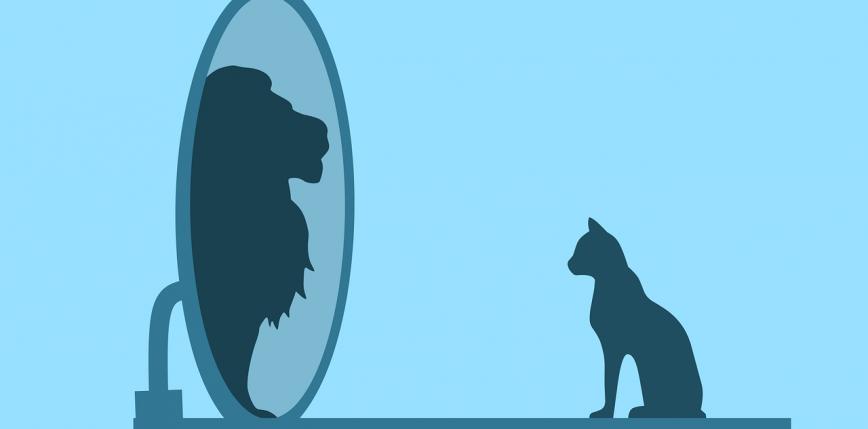 Osoby narcystyczne odnoszą większy sukces w crowfundingu