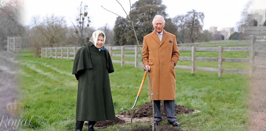 Wielka Brytania: sadzenie drzew z okazji 70-lecia panowania królowej